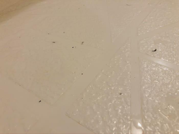 風呂場に落ちた汚れ